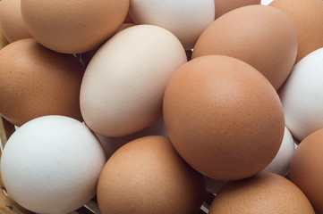 Eggs are chicken. Close-up
