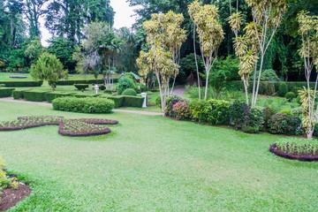 Grounds of beautiful Peradeniya Royal Botanical Gardens near Kandy, Sri Lanka