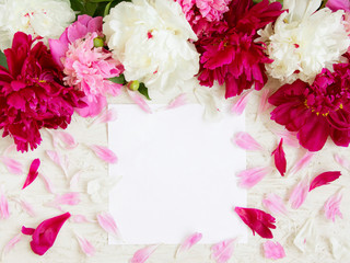 Beautiful Frame of peony Flowers