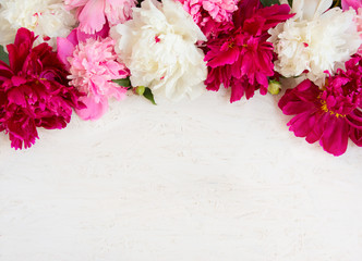 Beautiful peony Flower background