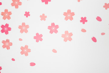 Pink flowers on white wall background