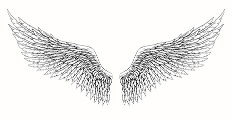 Wings Of Angel