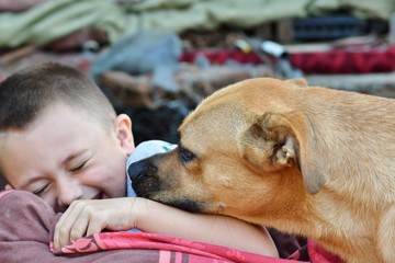Smiling Little boy is having fun with  nice dog  as a best friends
