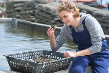 female seafood harvesting of fishermen marine
