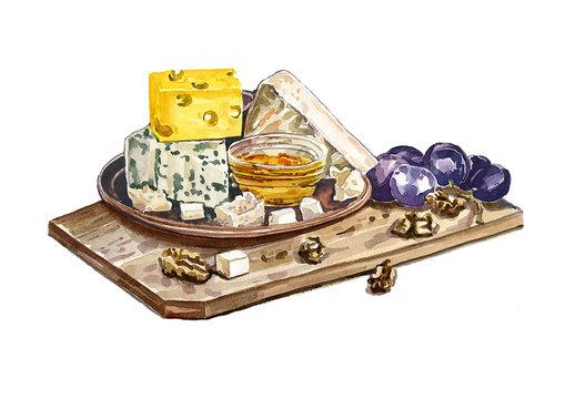 Cheese set. Watercolor drawing