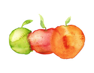Watercolor hand drawn sketch illustration of red, yellow and green apples isolated on white art