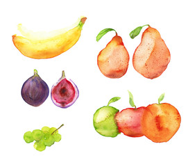 Watercolor hand drawn sketch illustration set of fruits - bananas, figs, green grapes, pears and apples isolated on white art