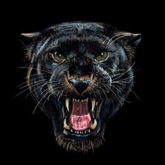 Roaring black panther on black.