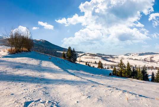 wonderful winter landscape in mountains. lovely rural scenery with snowy slopes on a bright sunny day