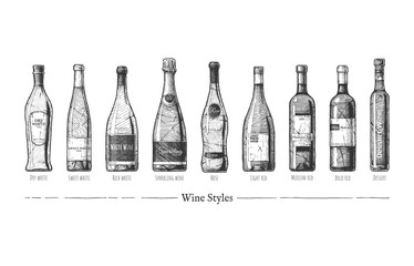 Wall Mural - illustration of Wine styles