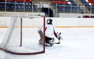 Hockey goalie in the world