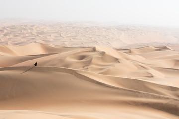 Young beautiful Caucasian woman posing in a traditional Emirati dress - abaya in Empty Quarter desert landscape. Abu Dhabi, UAE. Fotoväggar