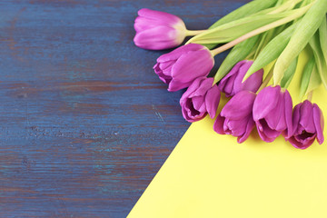 Violet tulip flowers on blue wooden background with yellow copy space