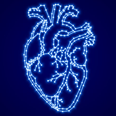 Blue glowing digital human heart