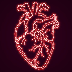 Red glowing digital human heart