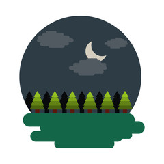 forest tree natural theme scene night landscape vector illustration