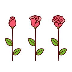 Cartoon rose set