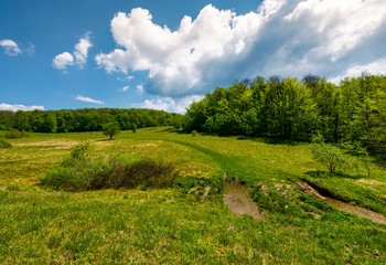 road through mountain meadow among forest. lovely scenery under the blue summer sky with clouds