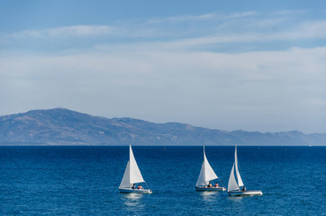 Luxury yachts at Sailing regatta in Santa Barbara