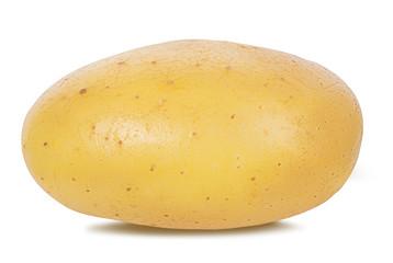 Fototapete - potato isolated on white background