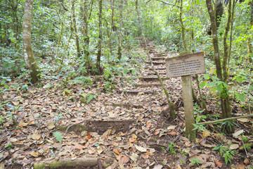 A national reserve near San Cristobal de las Casas in Chiapas in Mexico