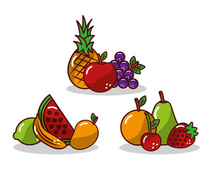 set of fruit fresh tasty apple pineapple grape strawberry lemon vector illustration