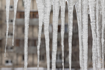 Dangerous icicles hang from the snowy roof of the house. Big icicles in the streets of the winter town