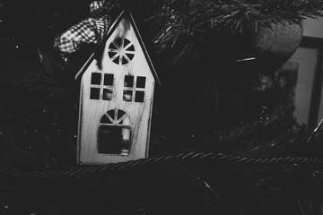 House on a tree