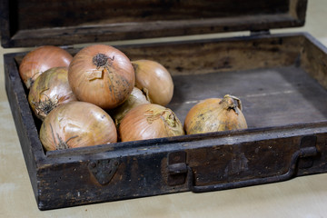 Onion the best specific  for influenza. Syrup prepared from onions.