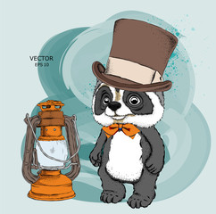 Cartoon raccoon  in hat drawing. A good character for children. Vector illustration