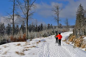 Narciarze biegowi na szlaku w górach