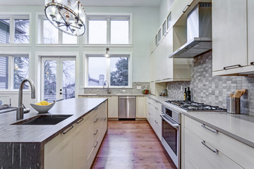 Contemporary white kitchen with high-end kitchen appliances