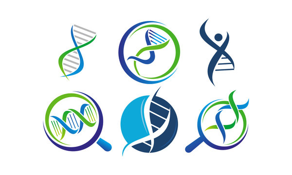DNA Genetics Template Set