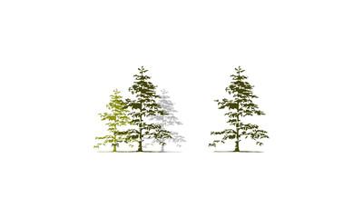 Cedar Tree Template Set