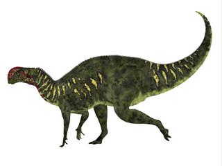 Altirhinus Dinosaur Side Profile - Altirhinus was an iguanodont herbivore dinosaur from the Cretaceous Period of Mongolia.