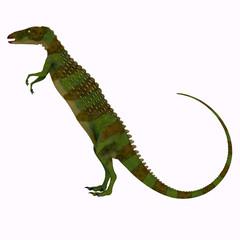 Scutellosaurus Dinosaur Side Profile - Scutellosaurus was an armored herbivore dinosaur that lived in Arizona, USA during the Jurassic Period.