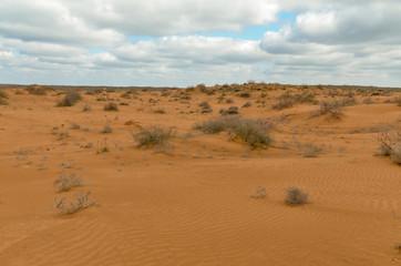 slopes of yellow sand dunes in the desert Utta, Republic of Kalmykia