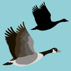 goose vector illustration flat style profile side