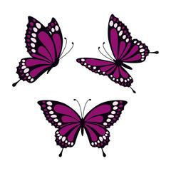 set with butterflies