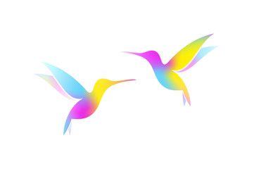Flying hummingbirds. Colorful birds on white background