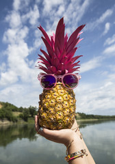 Funny pink pineapple with pink sunglasses