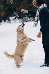 Photo of woman playing with dog in winter