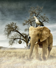 Digital vintage photo manipulation with animals in dust - no time left