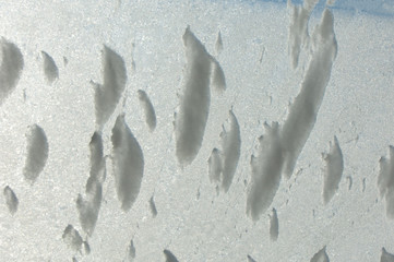 Texture, pattern. Winter photography. Picture of frost on the glass. Frozen water on the glass. a fantastic drawing, you will be right to use it in your design, well suited for the screensaver.