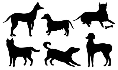 Set of dogs. Black silhouette of a dog isolated on a white background. Collection of black icons of dogs. Vector illustration.