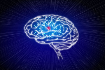An illustration of a human brain on a colored background symbolising intelligence, mental health and creative thinking.