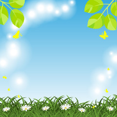 Shining Spring background with juicy green grass and daisy flowers and flying butterflies.