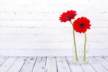 Printed kitchen splashbacks Gerbera Red gerbera daisy
