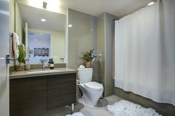 Condo bathroom design with single vanity cabinet
