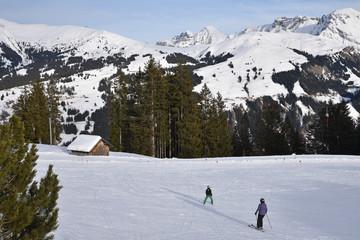 Ski à Lenk dans l'Oberland bernois en Suisse